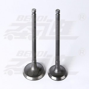 Personlized Products Valvetronic Exhaust Valve - Hyundai – Bendi