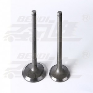 Chinese wholesale Burned Exhaust Valve - Hino – Bendi