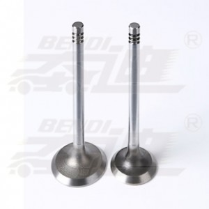 Good quality Nitriding Engine Valve - Ford – Bendi