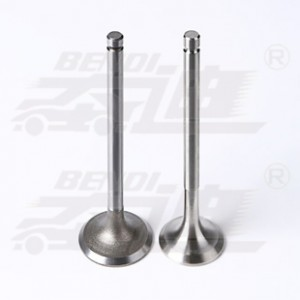 Leading Manufacturer for Performance Engine Valves - Lombardini – Bendi
