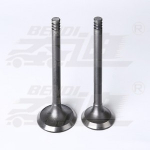 Hot sale Factory Titanium Exhaust Valves - Lada – Bendi