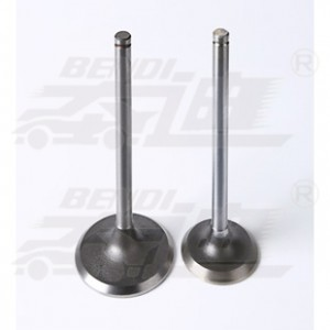 New Arrival China Engine Valves Suppliers - Jeep – Bendi