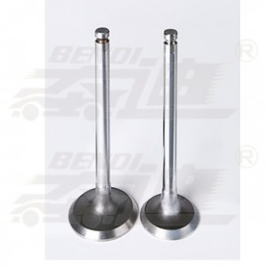 Bottom price Automotive Engine Valves Manufacturers - Massey – Bendi