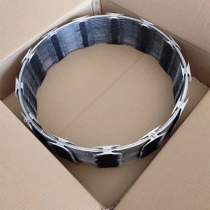 Hot-selling Welded Wire Mesh - Razor  Wire – Bestar Metal