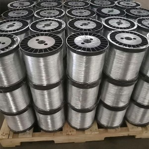 Super Lowest Price Plastic Coated Wire - Stainless Steel Wire – Bestar Metal