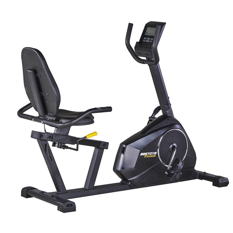 Commercial Experience Recumbent Exercise Bike