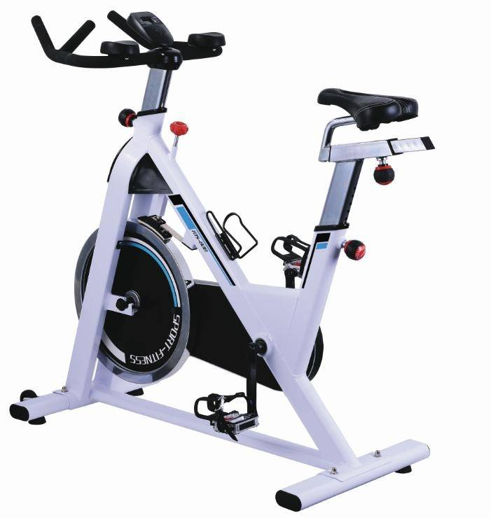 Magnetic Exercise Bikes Stationary Belt Drive Indoor Cycling Bike with High Weight Capacity Adjustable Magnetic Resistance201+dianzi
