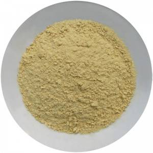 Manufacturing Companies for Dehydrated Cucumber - Dehydrated Ginger Powder – Ruisheng