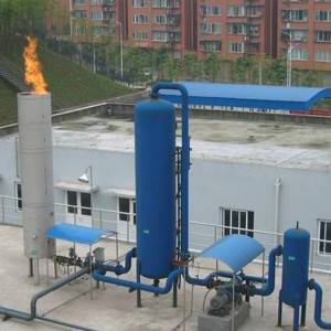 Chinese wholesale Ecological Animal Husbandry - Biogas torch – Boselan