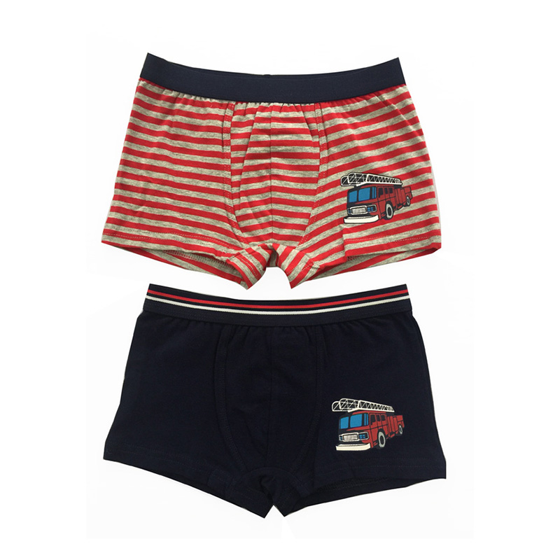 OEM/ODM Factory Denim Underwear - OEM Lovely Printed Cartoon Elastic Waistband Little Kid Boys Underwear  – baishiqing