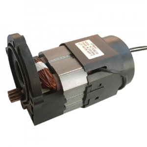 HC76 Motor for high pressure washer(HC7630Q/40Q)