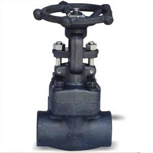 Factory wholesale 200mm Gate Valve - Forged steel gate valve – CEPAI