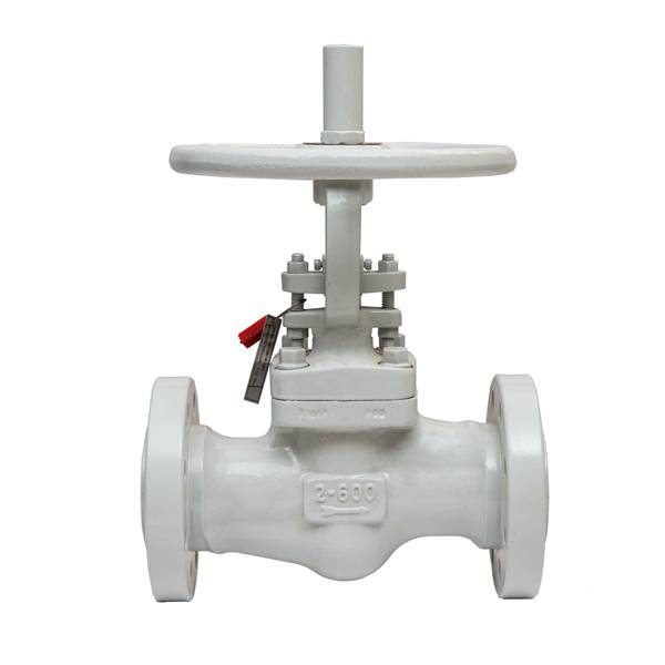 Reliable Supplier Qsm Ball Valves - Forged steel globe valve – CEPAI
