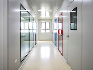 cleanroom door & window