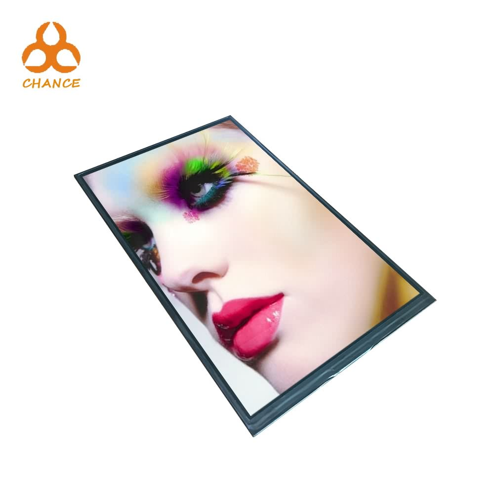 800(RGB)* 1280 MIPI 4Lane interface graphic programmable 10 inch tft lcd display panel