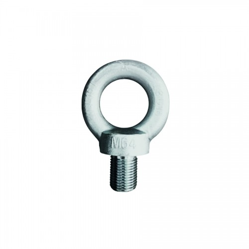 New Fashion Design for Single Leg Chain - DIN 580 EYE BOLT – CHENLI