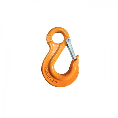 2019 wholesale price Eye Foundry Hook - G80 EYE SLING HOOK WITH LATCH – CHENLI