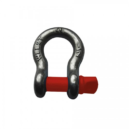 Factory selling Chain Sling Tags - SHACKLE G209 – CHENLI