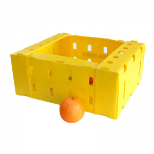 Factory source Plastic Divider Box - fruits box – Runping