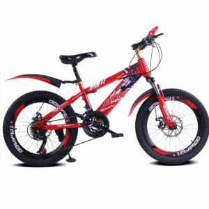 PDWZ Kids outdoor Sport 21 speed Cycling mountain bicycle