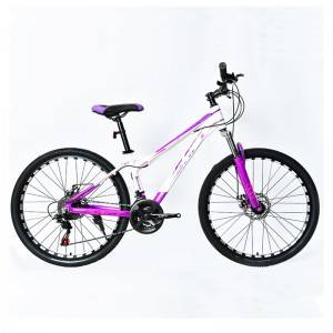 PDT520 Factory directly supply low price hot sale 21 speed mountain bike.