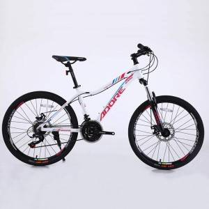 2021hot sale 21 speed mountain bike of good quality cost effective