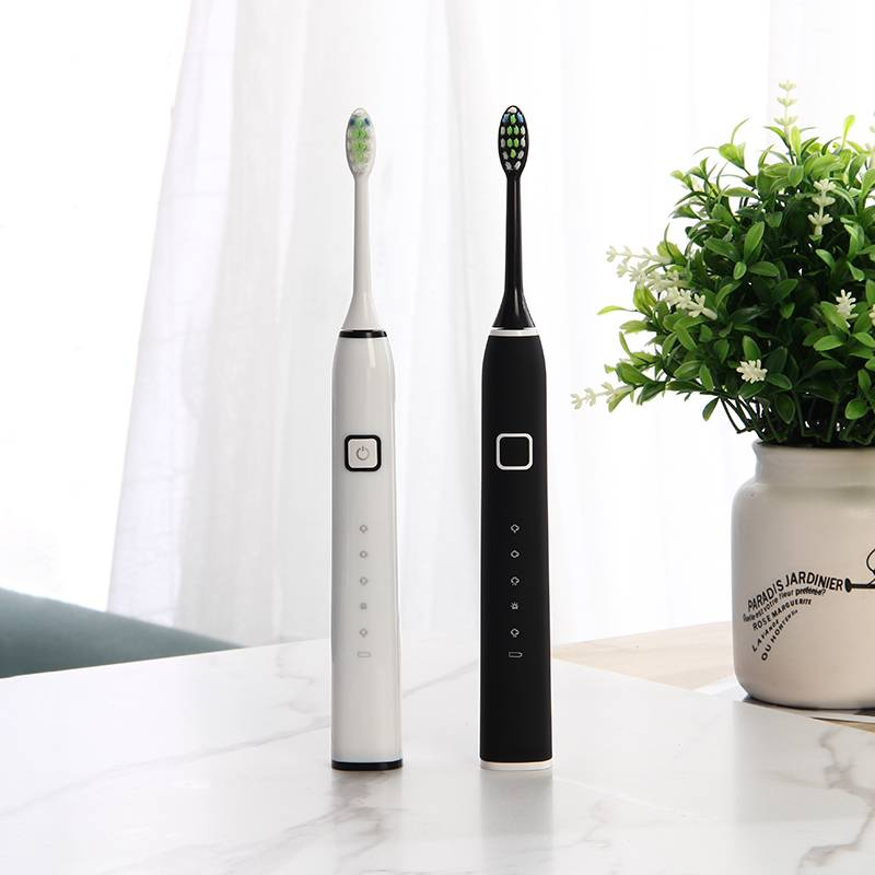 2020 New Arrived Adult Sonic Electric Toothbrush EA312