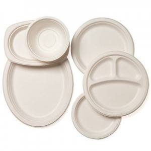 100% Biodegradable Sugarcane Pulp Bagasse Plate