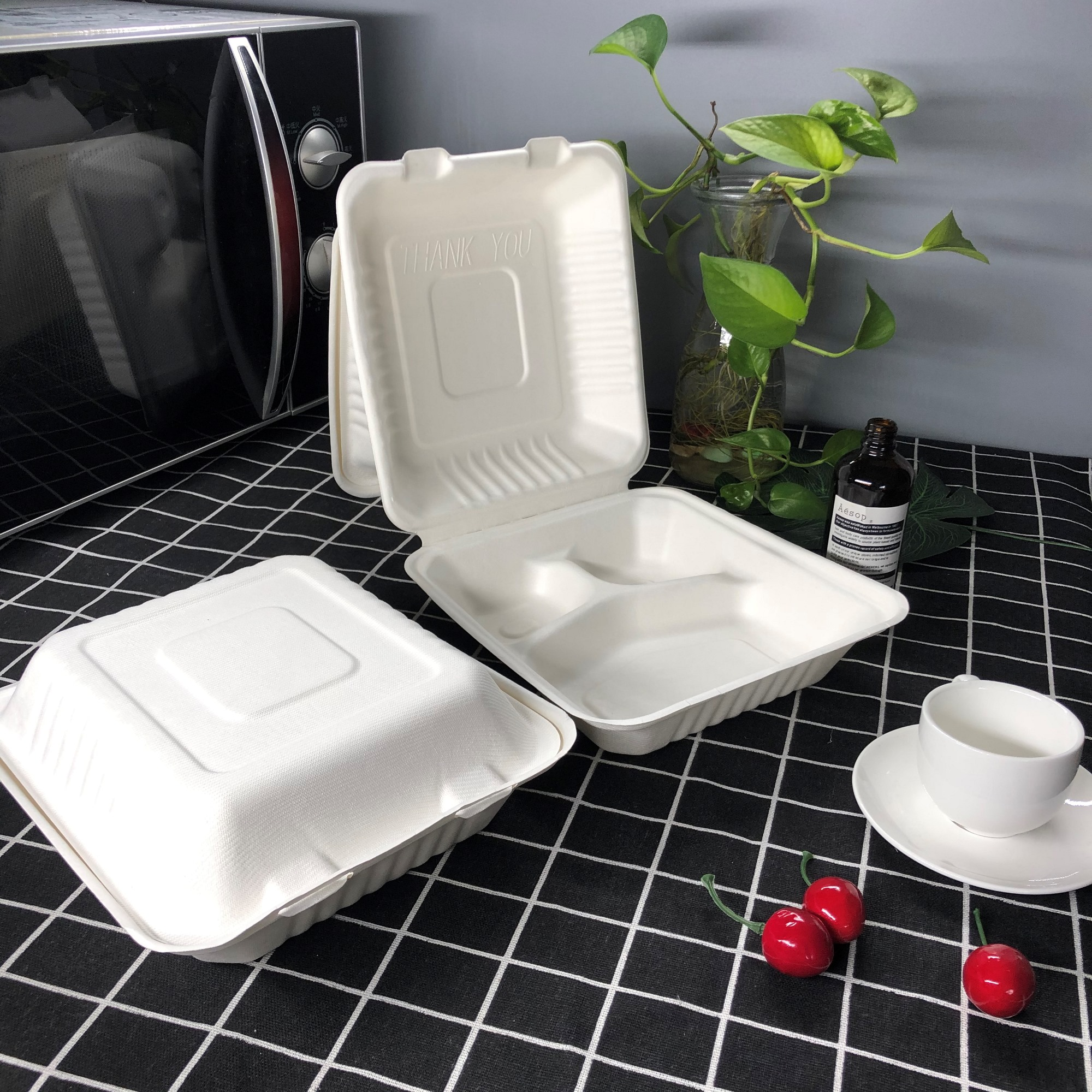 2020 wholesale price Biodegradable Cleaning Products - Biodegradable Sugar Cane Bagasse Food Container – CHUNKAI