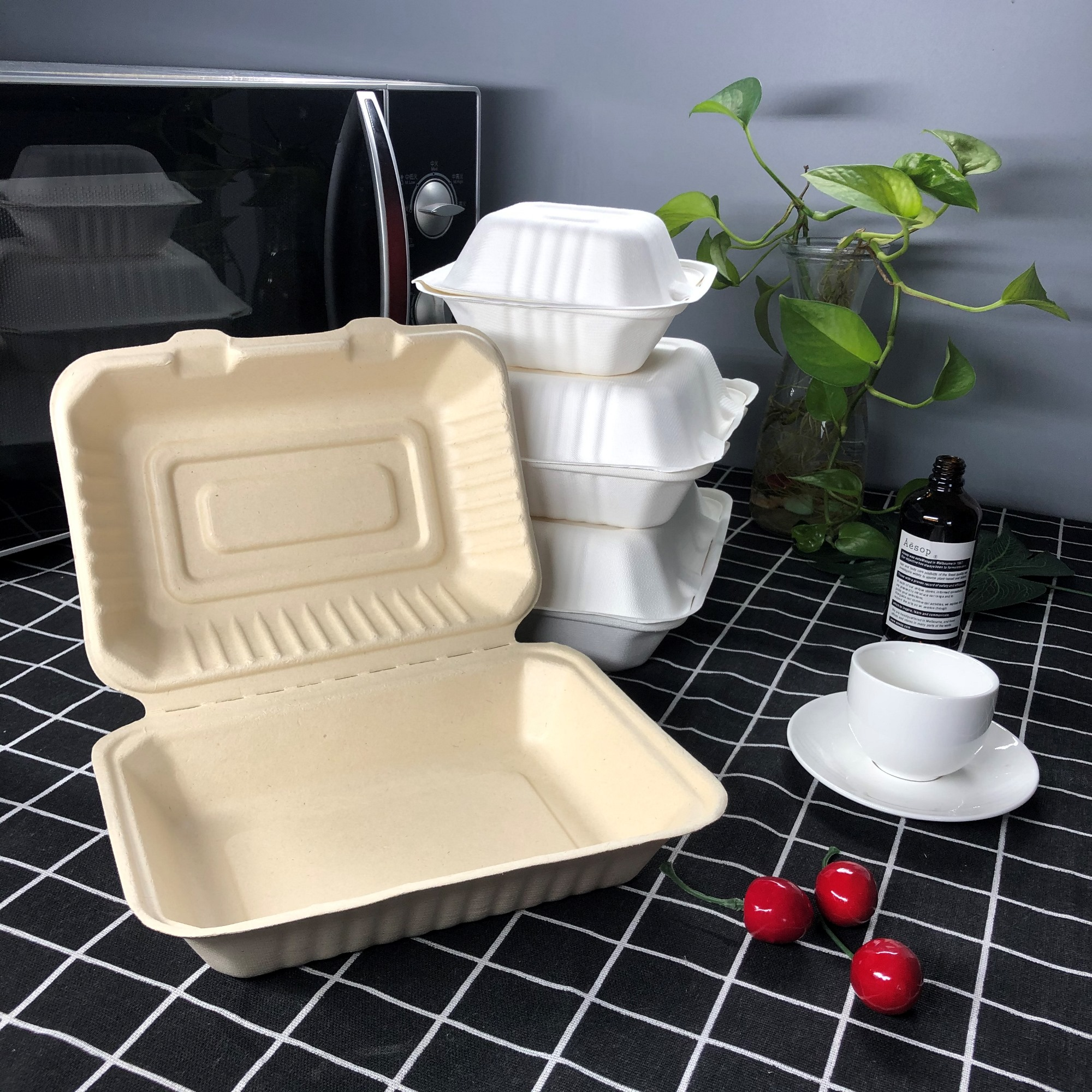 High Quality for Biodegradable Takeaway Containers - Biodegradable Sugar Cane Bagasse Food Container – CHUNKAI