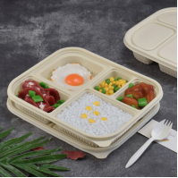 Disposable Biodegradable Corn Starch Food Containers Featured Image