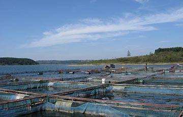 Other industries-aquaculture