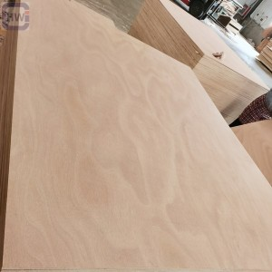 HW  2050X1600MM  Israel Okoume Plywood