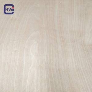Manufacturing Companies for Marine Plywood Cupboards - HW  1220*2440mm Okoume Plywood – Changyu