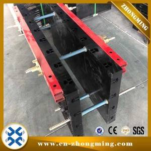 Steel Wall Formwork Systems - Wall & Slab Plastic formwork – Zhongming