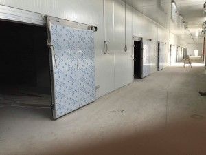 cold room swing door price cold room doors for sale cold storage warehouse doors
