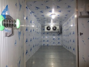 40 feet cold room container for meat chiller and freezer for sale