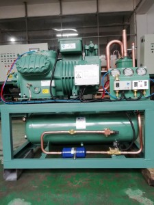 Bitzer compressor Blast freezer condensing unit 6GE-40 low temperature refrigeeration unit for cold room