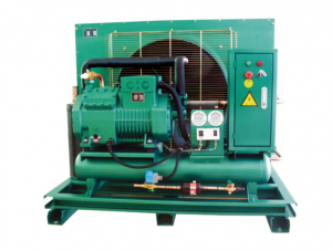 Germany Bitzer compressor 4EES-4 cold room cond...