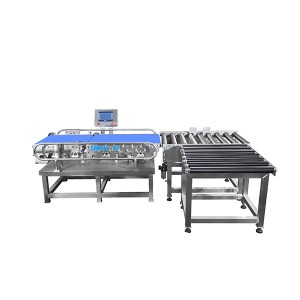 Case carton weight checker online checkweigher