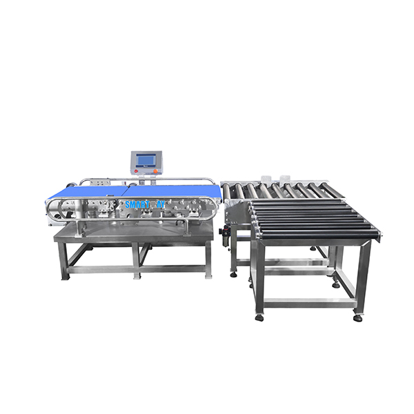 China wholesale Checkweigher Price - Case carton weight checker online checkweigher – Smart Weigh