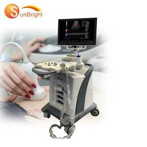 Discount wholesale Color Duplex Sonography - CE echo machine phased array probe trolley color Doppler ultrasound  – Sunbright