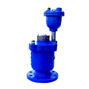 9101A Double Orifice Air Relief Valve
