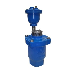 9709 Double Orifice Air Relief Valve