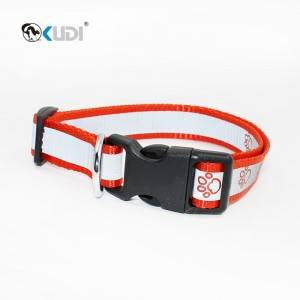 Patterned Nylon Dog Collar