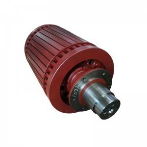 professional factory for Coupler Bumper - Motor rotor – Daqian