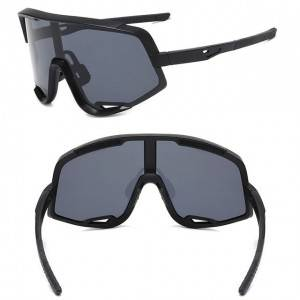 Well-designed 3d Sunglasses - DLX8229 Windproof Sunglasses for Riding – D&L