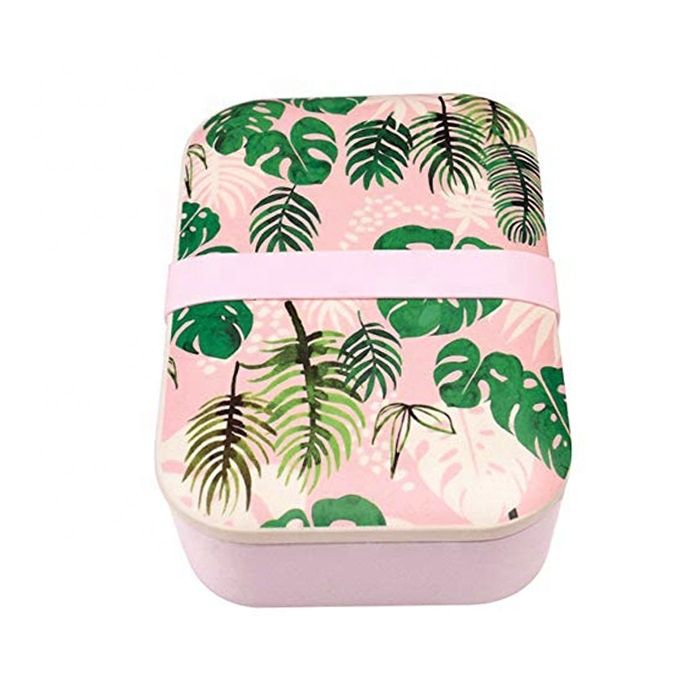 Natural Eco-friendly Biodegradable Bamboo Fiber Food Containers Bento Lunch Box For Kids