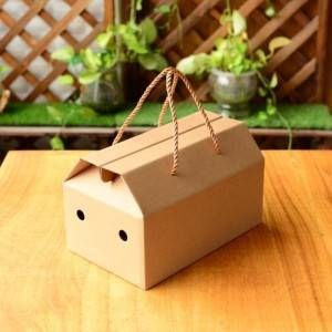 High reputation Big Corrugated Boxes - Fruit flexo carton – Packada