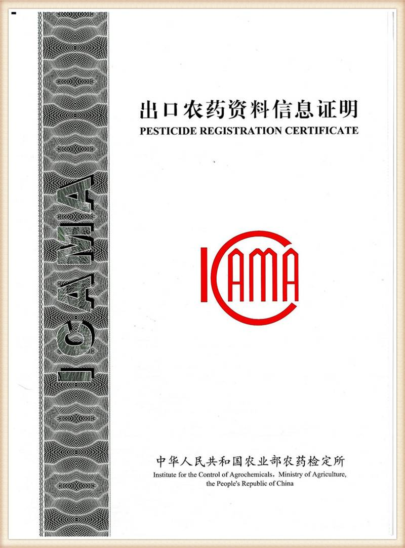 ICMA_005